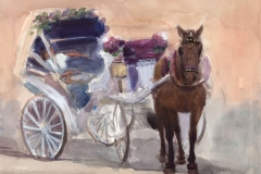 Horse and Carriage w/Sleeping Driver