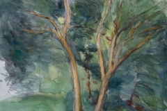 two_trees_central_park