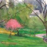 Cherry Blossom, Central Park, 2014