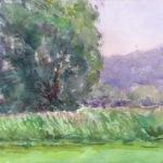 hayden heights rd ii 150x150 - Watercolor Landscapes