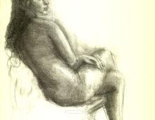 Nudes Drawings