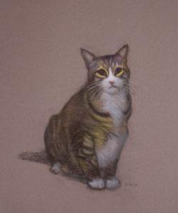 """Joey, 24 x16"""", Pastel on Felt Gray (Gris fumée) Canson Mi-teintes paper"""